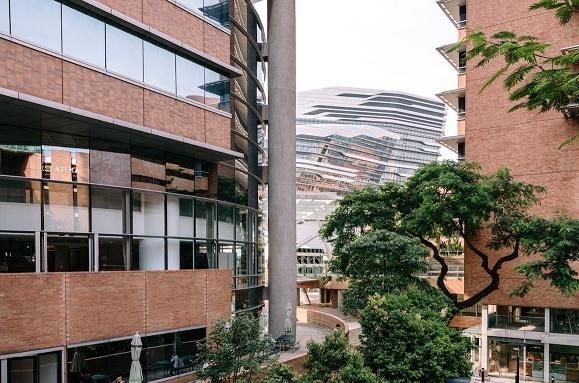 香港理工大学就大湾区分校选址 未来达2-3万学生规模